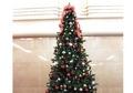 フロントロビーにクリスマスツリー登場