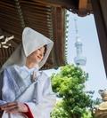 6/4【7つの神社紹介×豪華試食!】本格☆★神社挙式フェア★☆