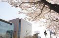 札幌ビューホテル 大通公園 5月3日(水)ついに開業いたしました!